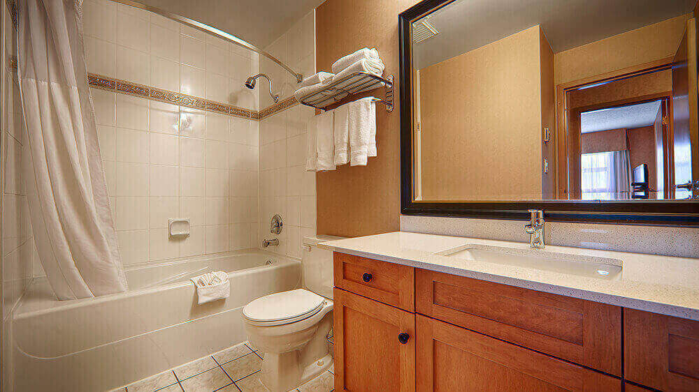 executive-bathroom-with-shower